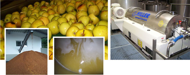 Apple juice production